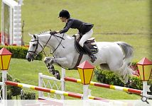 Luciana Diniz and Winningmood: Mistake at the last fence